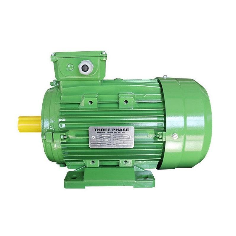 Motor 3 phase RPM 900-1000 vòng (6Pole)